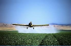 pesticida alzheimer