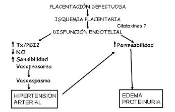 esquema preeclampsia