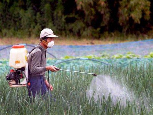 riesgo ecotoxicológico