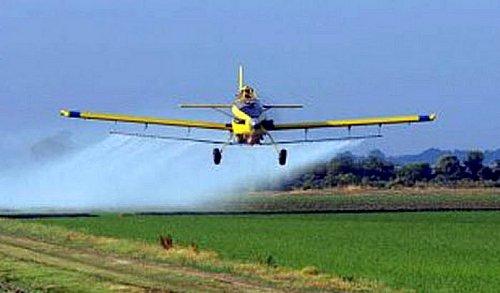 pesticidas salud