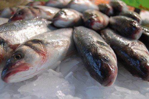 Histamina en Pescados
