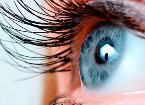 bioquimica ocular