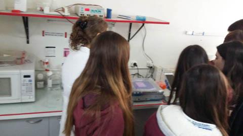 visita laboratorio fares taie