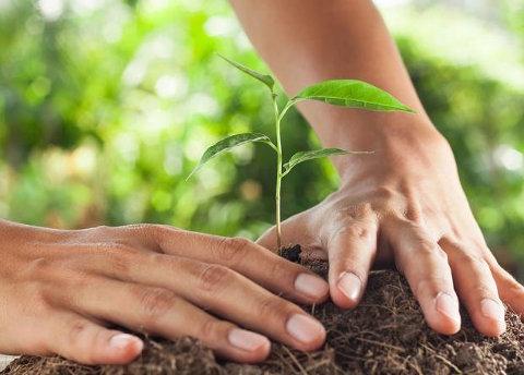 conservar suelo
