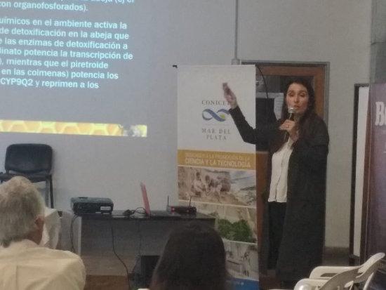 Sandra Medici