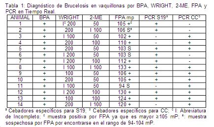 dianostico por BPA